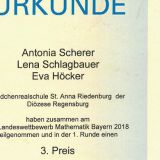 Landeswettbewerb_Mathematik_Urkunde